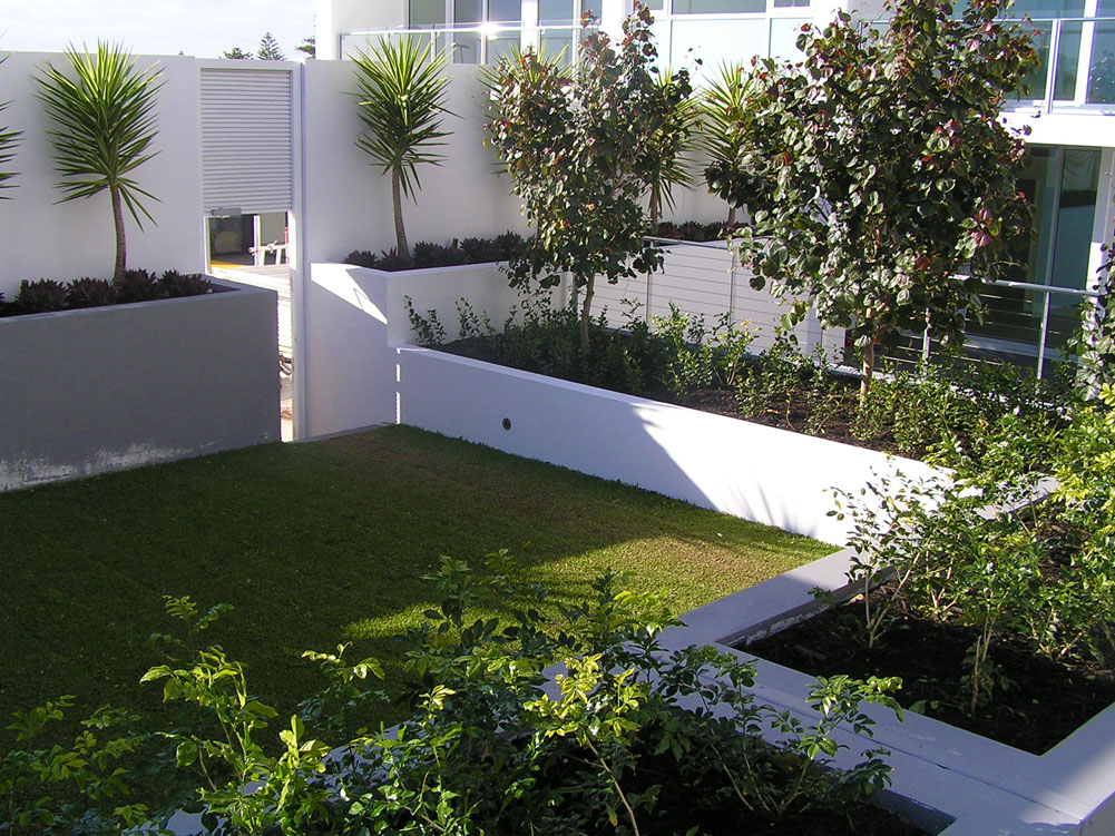 Claremont pool garden design deep green landscaping perth for Pool garden design pictures