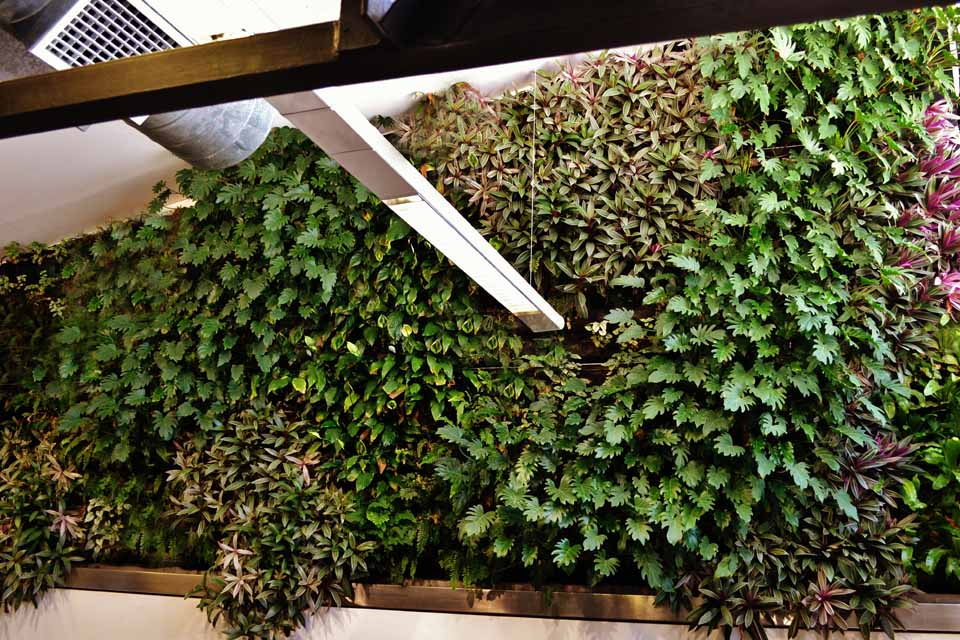 JCY Architects Vertical Garden