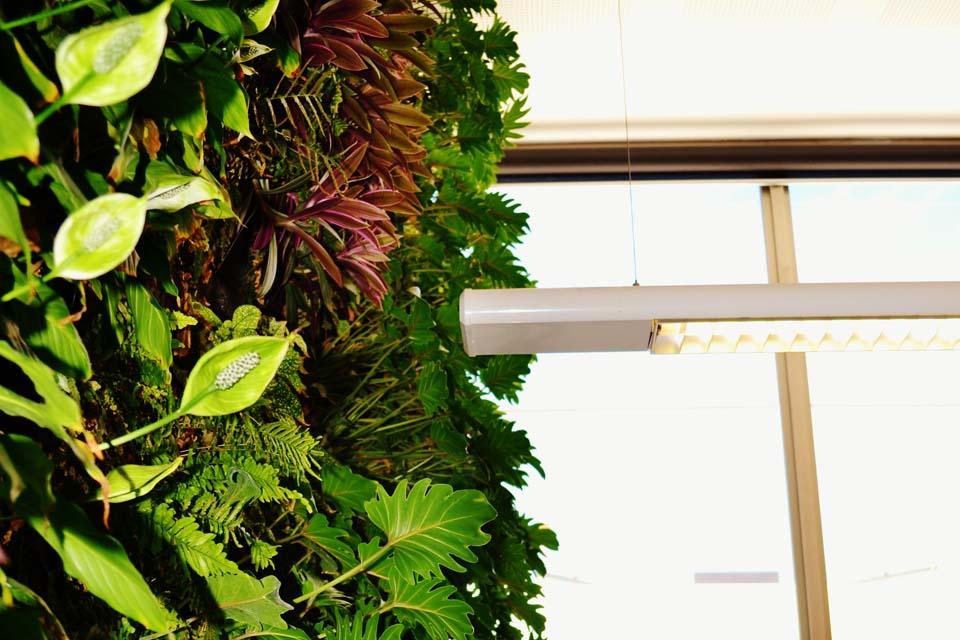 Jcy Architects Vertical Garden Deep Green Landscaping Perth