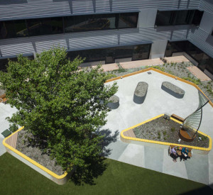 A view from a high window looking down into a courtyard with a tree on the left and a glass sculpture on the right.