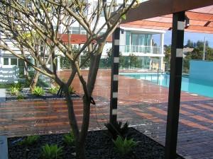 Claremont pool garden design