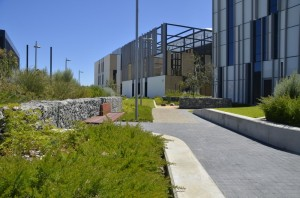 Fiona Stanley Hospital paths