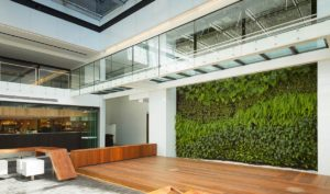 A spectacular public space with wood floor, steel and glass mezzanine walkway and a vertical garden with ferns and broadleaf plants in a wave pattern.
