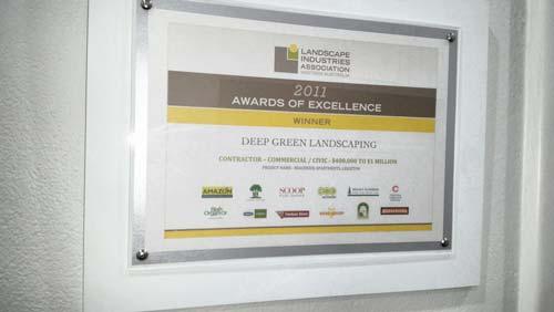 2011 Best New Member Award