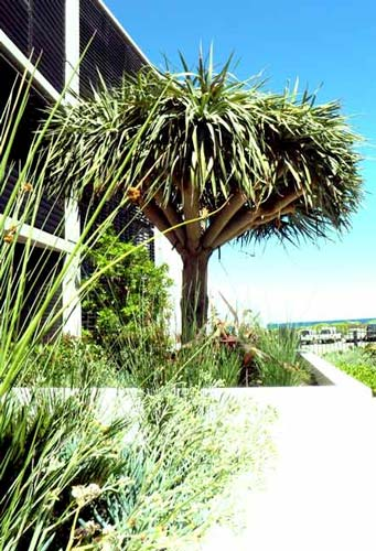 Winner Leighton Beachside Apartments
