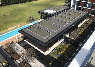 Roof top garden at an apartment building in Perth.